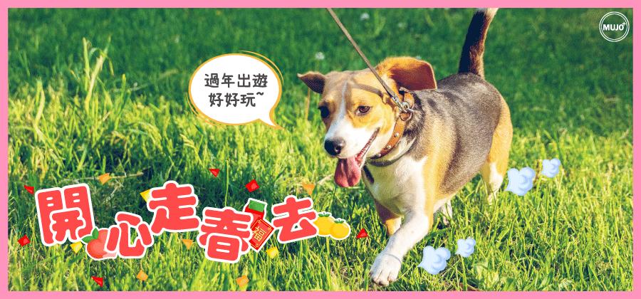 【寵物毛孩走春~捷運台鐵高鐵客運怎麼搭?走春5要點報你知!】